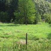 Pozemek Mirošovice